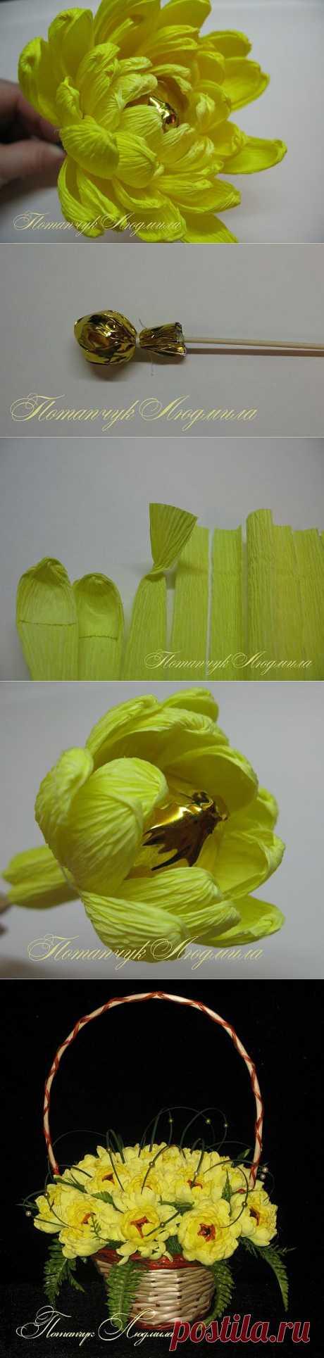 Мастер-класс по свит-дизайну. Конфетная хризантема. / Флористика, топиарии / PassionForum - мастер-классы по рукоделию