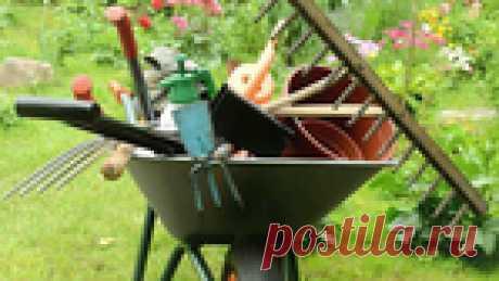 Приусадебный участок – это счастье! Сода в огороде и др. полезные советы дачнику!