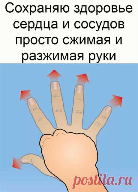 Сохраняю здоровье сердца и сосудов просто сжимая и разжимая руки