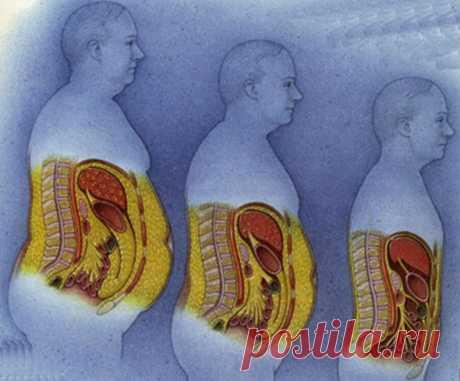 Как бороться с жировыми отложениями на животе