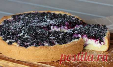 Пирог из творога с черникой — Sloosh – кулинарные рецепты