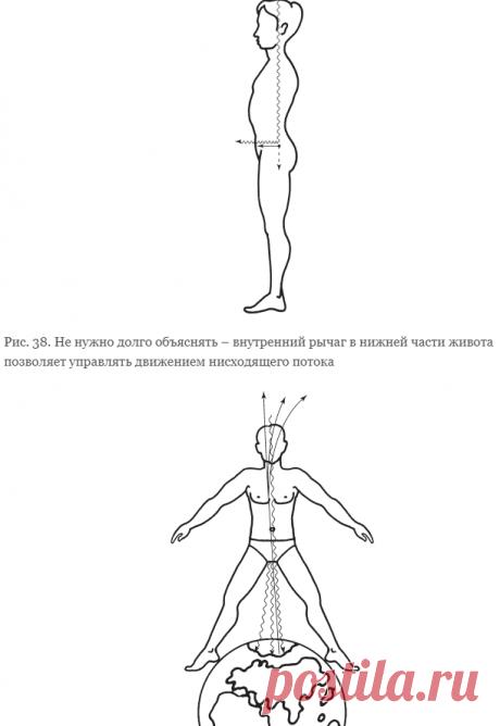 Шаг 9 Целостное ощущение главных энергетических потоков своего тела. Освобождение [Система навыков Дальнейшего ЭнергоИнформационного Развития. I ступень]