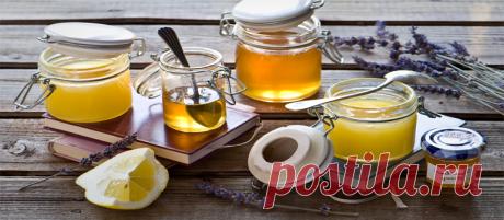 Мифы о «жидком золоте» или польза меда для человека   На всякий случай