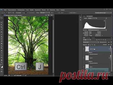 Создаём лучи света, проходящие сквозь ветки деревьев - YouTube