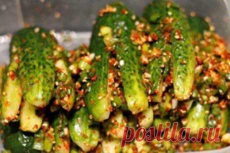 Ои Собаджи (кимчи из огурцов, огурцы по корейски)   Наша кухня - рецепты на любой вкус!