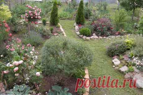 Красивый сад на небольшом участке — 6 соток