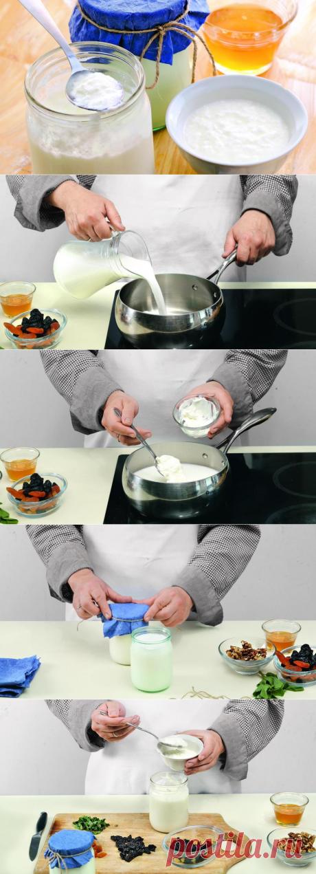 Домашний мацони. Пошаговый рецепт с фото на Gastronom.ru