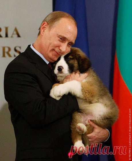 El presidente de Rusia y su perro