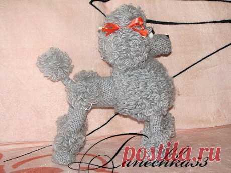 Пудель - Амигуруми - Форум почитателей амигуруми (вязаной игрушки)