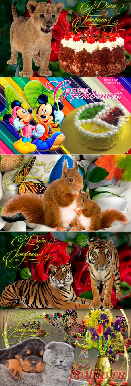 Красивые открытки на День рождения   Поздравления с Днем рождения   Яндекс Дзен
