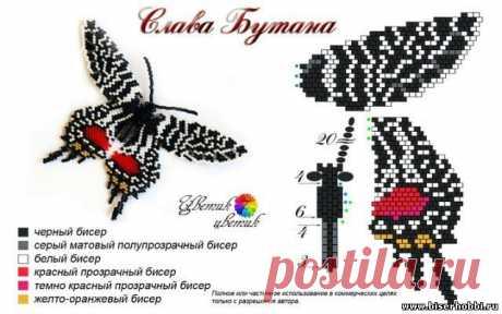 Бисером Бабочка шаблон / из бисера бабочки / Pinterest