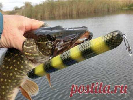 Лучшие виды приманок на щуку весной | Рыбалка и снасти | Яндекс Дзен