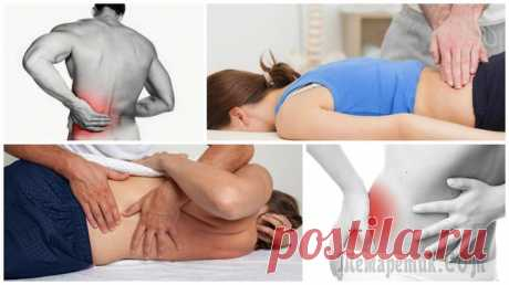 Back pain: the most common causes of emergence Almost each person during life has at least one long episode of pain in a back, and at a third of adults these unpleasant feelings repeat regularly. Relevance of a problem to an illyustrir...