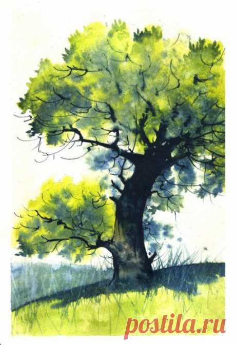 Рисуем дерево акварелью — DIYIdeas