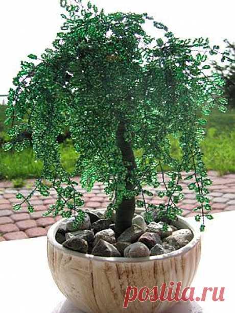 """Дерево """" Плакучая ива""""  Плакучая ива - нежное деревце с тонким стройным стволом и длинными нежными ветками, которые опускаются до земли. Вот такое деревце я попыталась сделать из бисера."""