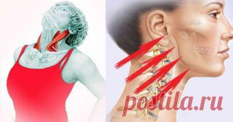Упражнение «Бабочка»: укрепляем шею и подтягиваем подбородок Упражнение укрепляет и удлиняет шею, подтягивает подбородок, улучшает овал лица снизу, растягивает грудные мышцы и замечательно улучшает осанку в верхней части тела.