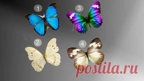 Рисуночный тест. 1 рекомендация от бабочки, которая может рассказать о сильных качествах и как их с пользой применять в жизни   Счастье рядом!   Яндекс Дзен