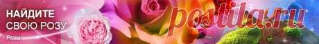 Купить луковицы лилий в Москве, заказать клубни цветов лилии дешево в интернет-магазине почтой по России наложенным платежом, цены, каталог | 3 стр.