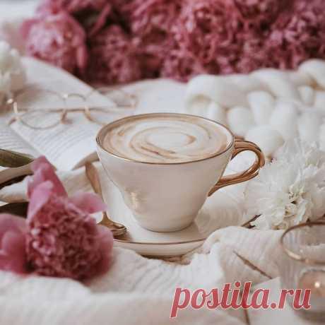 Что может быть прекраснее безмятежного субботнего утра? Можно проснуться чуть позже, заварить чашечку любимого кофе и просто наслаждаться моментом. Мы подобрали для вас интересные рецепты нашего любимого напитка и желаем вам прекрасного дня! ☕🌿 • Кофе с пряностями: • Кофе с лимоном: • Кофе с медом и чесноком: • Шоколадный кофе: #HMMood