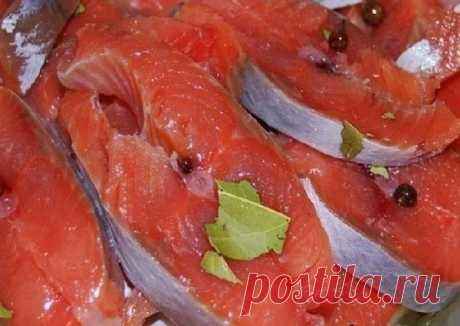 Солим горбушу за 5 минут: вкусно, быстро и недорого! | Рыбачим с Горячевым | Яндекс Дзен
