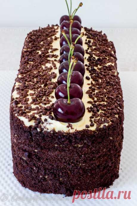 Шоколадный Торт с Вишнями Черный Лес без Глютена — Готовим Без Глютена