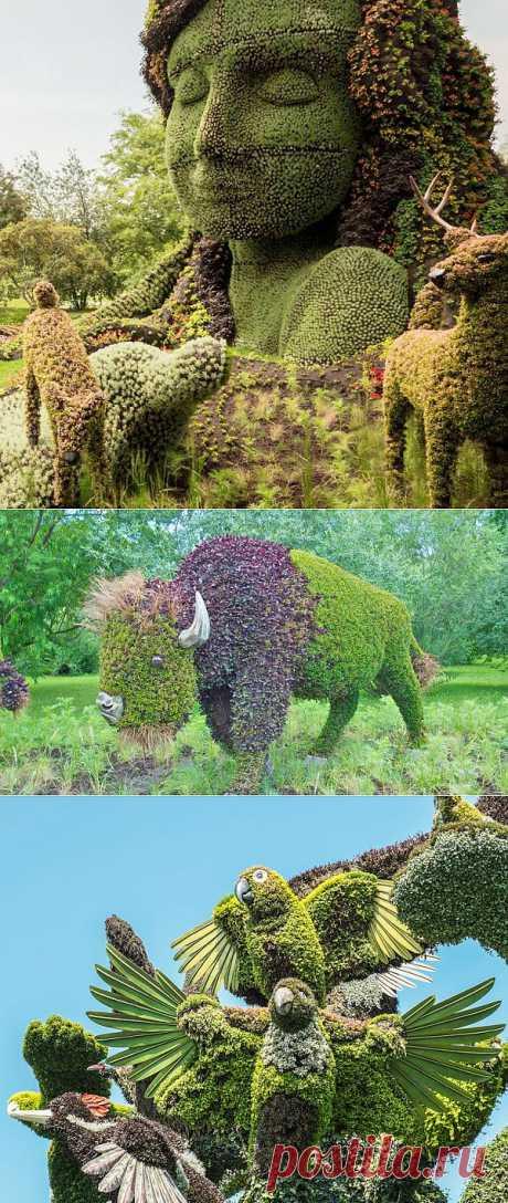 Фигурная стрижка кустов - удивительное искусство садоводства   Живой фотоблог