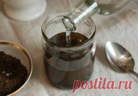 Настойка пчелиного подмора: применение и рецепты