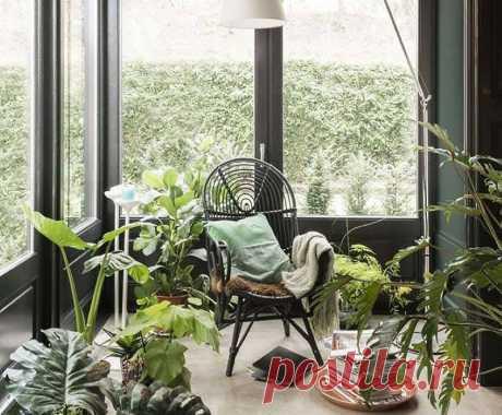 Наслаждаться природой, отдыхать в окружении красивых цветов и растений можно не только выезжая за город. Большинство городских жителей пытаются привнести частичку живой природы в убранство своей квартиры, высаживают цветы в горшках, облагораживая лоджии. Желая быть всегда в окружении благоухающих цветов, наслаждаться их красотой и умиротворением, можно создать зимний сад на балконе...