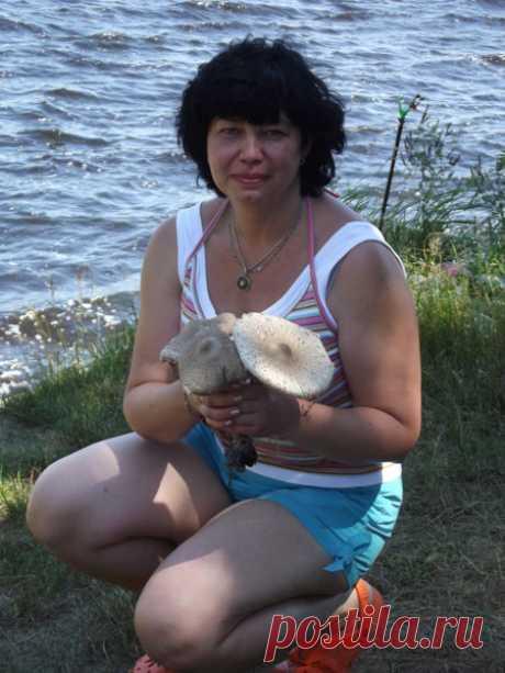 Светлана эахарова