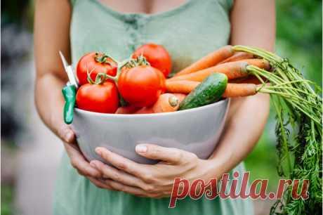 Чтобы похудеть, достаточно повернуться к еде спиной! — Диеты со всего света