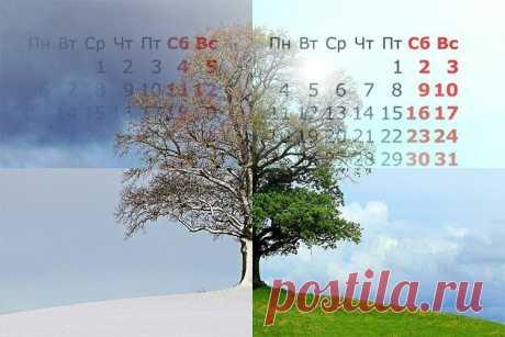 Нерест и начало весеннего клёва - 5 подсказок природного календаря   Рыбалка для людей   Яндекс Дзен