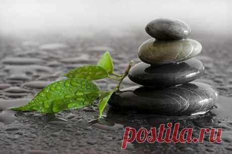 Мудрые принципы дзэн