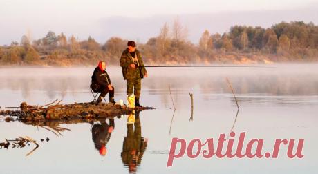 Близится середина осени: как успешно ловить рыбу в это время? | Рыбалка-БЛОГ | Яндекс Дзен