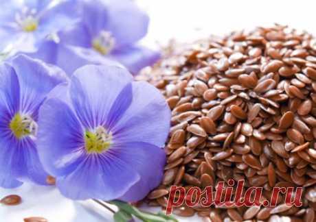 Semillas del lino para la depuración del intestino: como aceptar