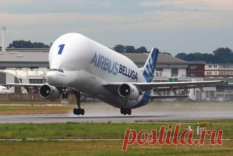 Фото SATIC Super Transporter (F-GSTA) - FlightAware