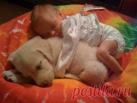 Думаешь, дети не должны иметь животных? Только взгляни на эти фотографии!