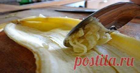 Вы больше не будете выбрасывать кожуру от бананов после того, как прочтете ЭТО… — Советы повара