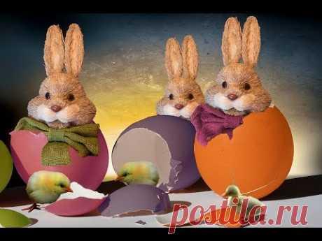 Если вы празднуете Пасху, то наверняка знакомы с праздничными традициями, в том числе вам знаком Пасхальный кролик, Пасхальные корзины и крашеные яйца. Но Вы...
