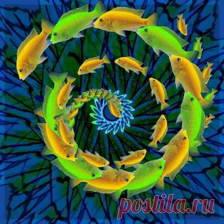 Mandala   Flickr - Photo Sharing!
