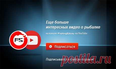 Красавица боролась с лещом до последнего! - видео онлайн. Сайт Новосибирских рыбаков