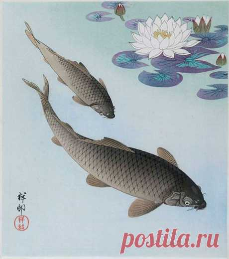 Рыбы, китайская живопись
