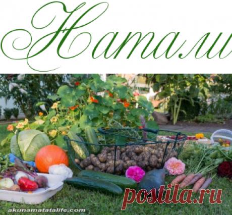 Развернутый лунный календарь садовода и огородника на 2019 год (продолжение) - Лунный календарь - Информационно - развлекательный портал.