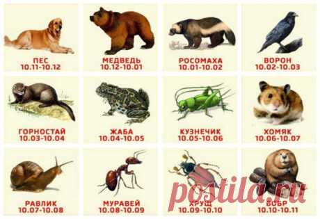 Древнеславянский гороскоп