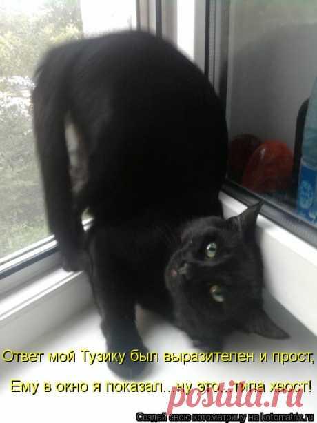 Котоматрица: Ответ мой Тузику был выразителен и прост, Ему в окно я показал...ну это...типа