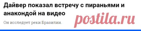 Дайвер показал встречу с пираньями и анакондой на видео - Новости Mail.ru