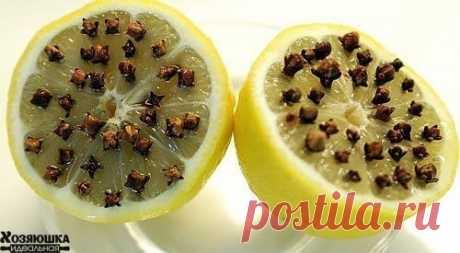 Лимон + гвоздика (приправа): ставим возле кровати и можно спать с открытыми окнами на даче!