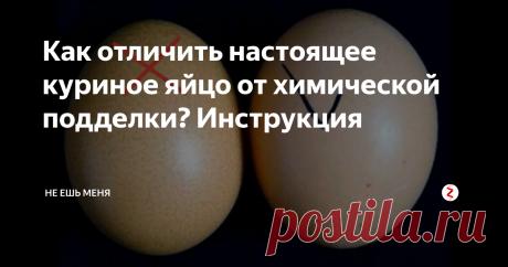 Как отличить настоящее куриное яйцо от химической подделки? Инструкция Когда поддельные яйца начнут поступать на полки российских магазинов? А может быть они уже здесь?