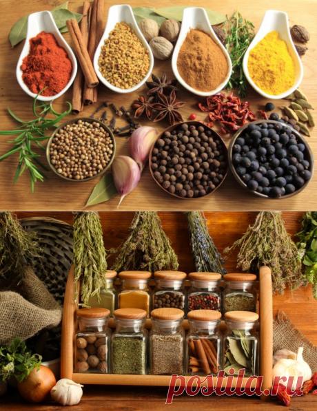 Хранение специй на кухне: идеи того, как хранить специи на кухне