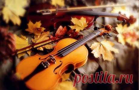 Плоды Осени, туризм, и музыкальные инструменты... Сентябрь - 10 Октября 2016 - Персональный сайт