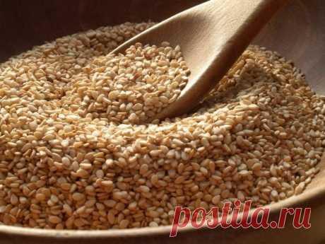 Кунжутное семя – польза и полезные свойства кунжутных семян